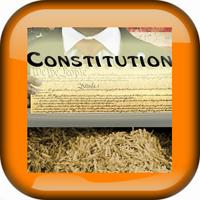 Constitution White