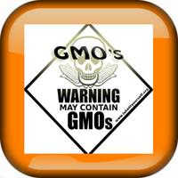 GMO White