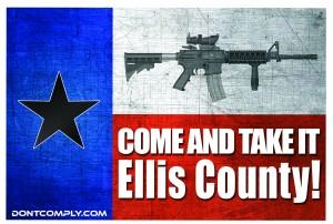 CATI Ellis County Flag