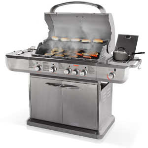 Apparently even your backyard barbecue is an evil the government should regulate. Image: 14gasgrillssaf.blogspot.com